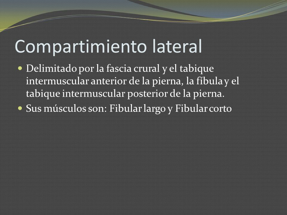 Compartimiento lateral