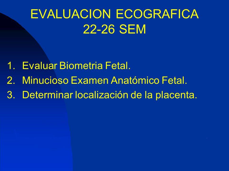 Evaluación Ecográfica Segundo Trimestre del Embarazo - ppt video ...