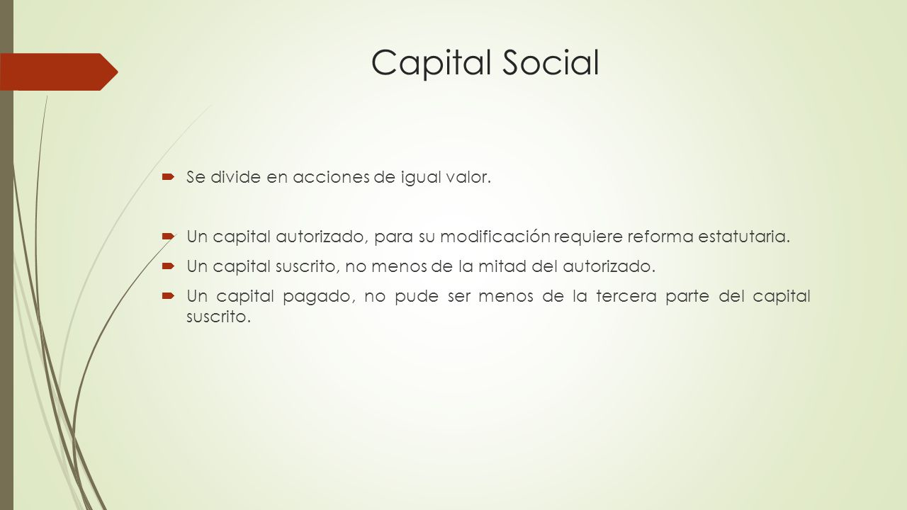 Capital Social Se divide en acciones de igual valor.