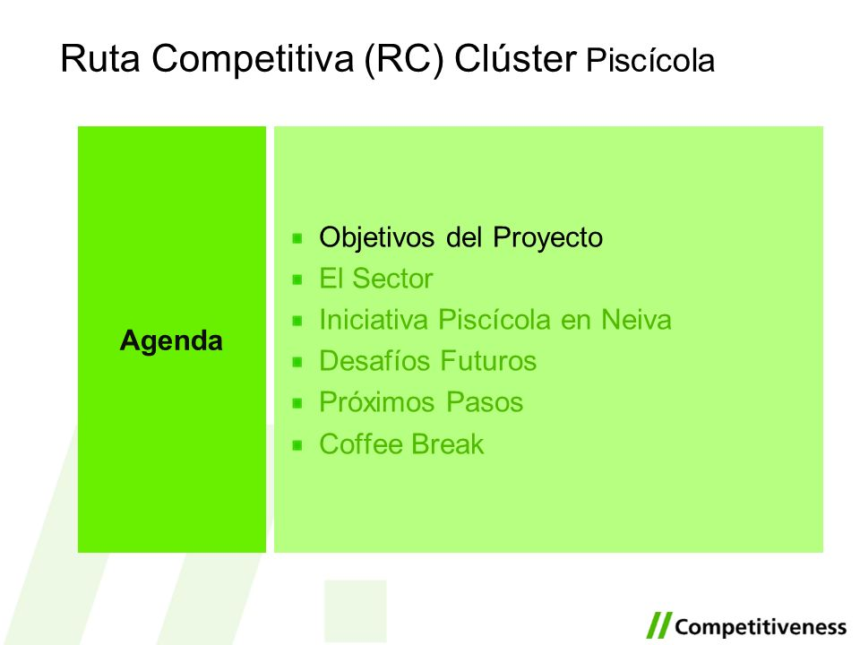 Ruta Competitiva (RC) Clúster Piscícola