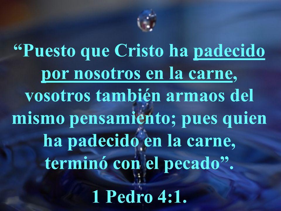 La Naturaleza Humana De Cristo En La Biblia Ppt Video Online Descargar