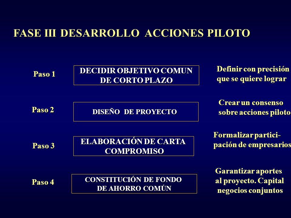 FASE III DESARROLLO DE ACCIONES PILOTO - ppt descargar