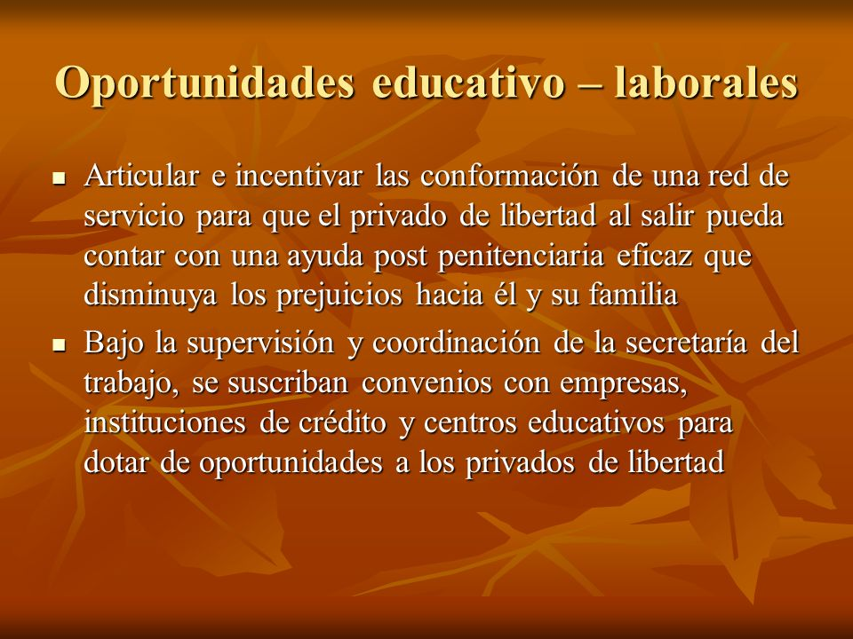 Oportunidades educativo – laborales