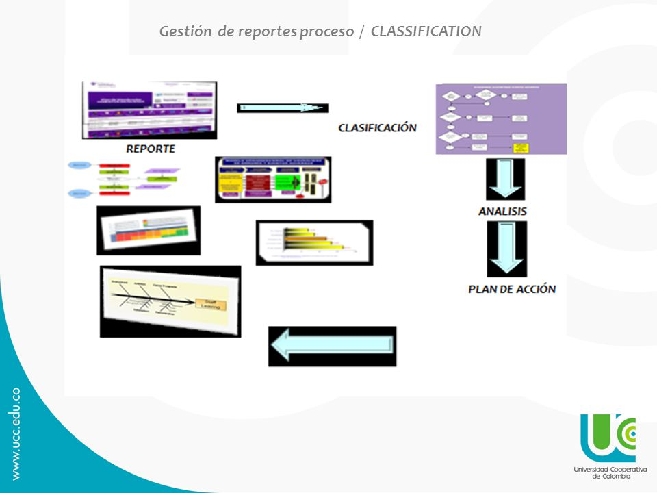 Gestión de reportes proceso / CLASSIFICATION
