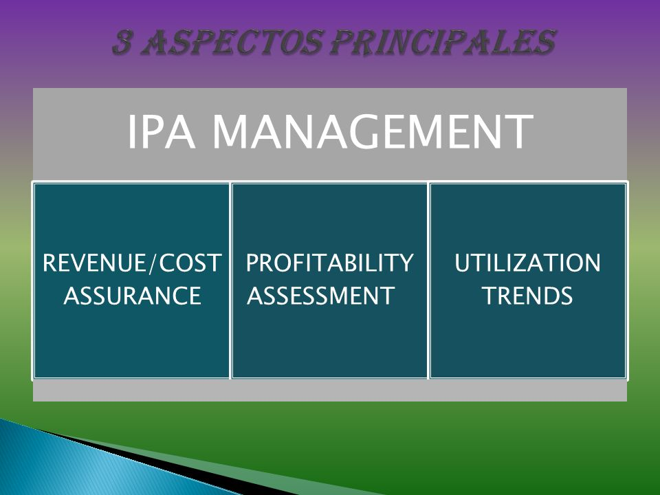 3 aspectos principales IPA MANAGEMENT REVENUE/COST ASSURANCE