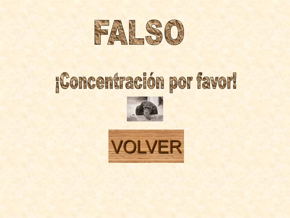 ¡Concentración por favor!