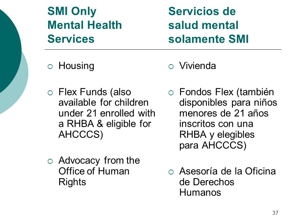 SMI Only Mental Health Services