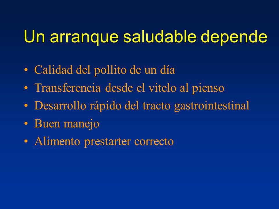 Un arranque saludable depende