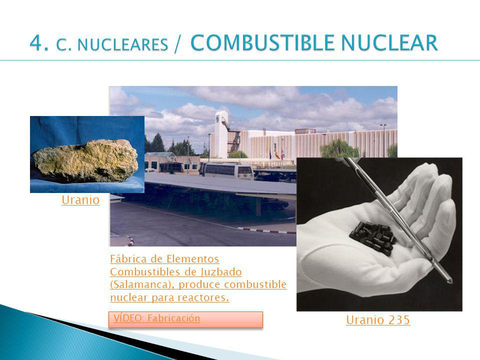 4. C. NUCLEARES / COMBUSTIBLE NUCLEAR