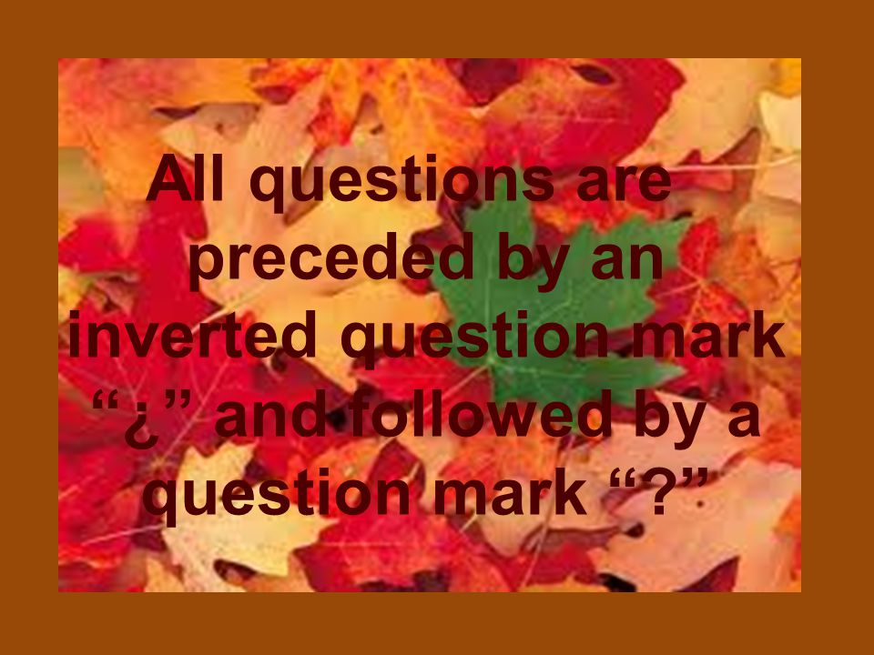 All questions are preceded by an inverted question mark ¿ and followed by a question mark