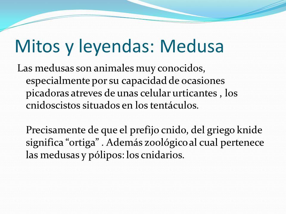 Mitos Y Leyendas José Lara Fabián Jara 7b Ppt Descargar