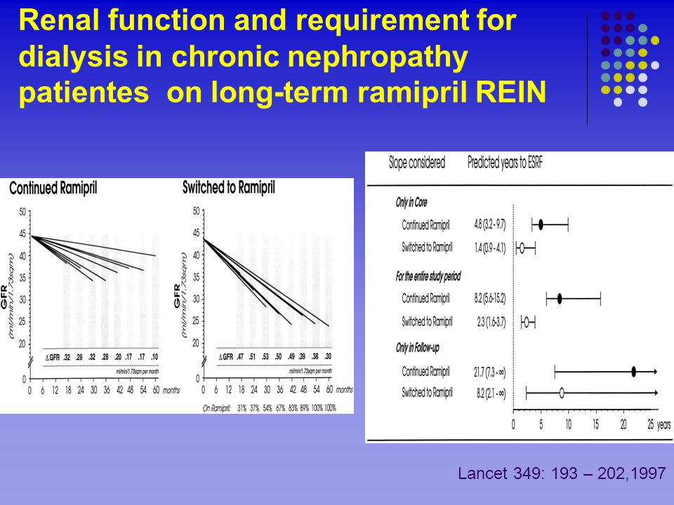 Renal function and requirement for dialysis in chronic nephropathy patientes on long-term ramipril REIN