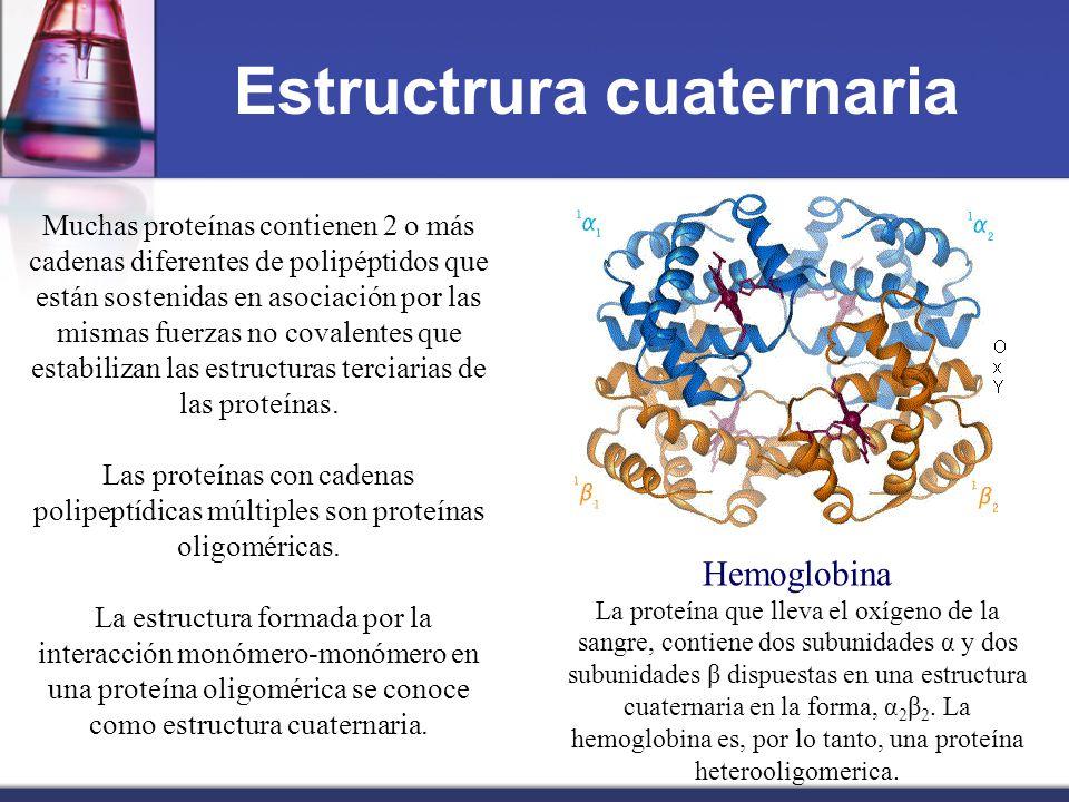 Unidad Viii Química De Aminoácidos Péptidos Y Proteínas