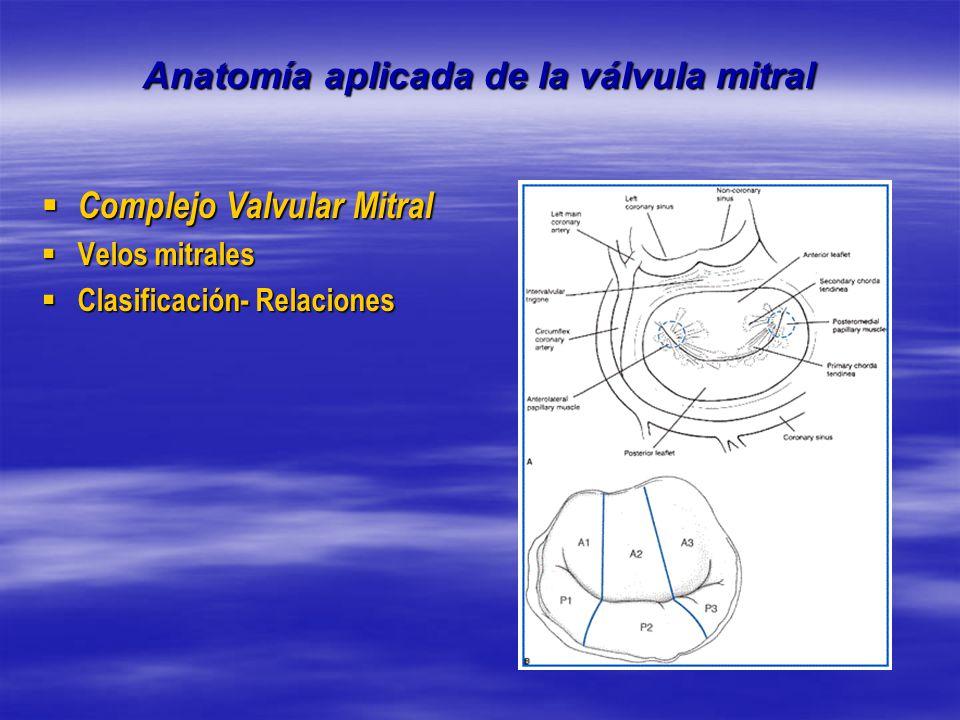 Encantador La Válvula Mitral Del Corazón Anatomía Foto - Imágenes de ...