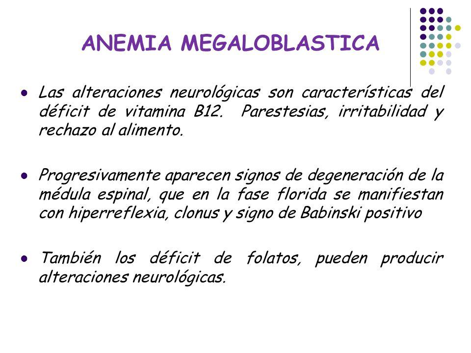ANEMIAS EN PEDIATRIA Dra.  Eliana García Sección Hematología y ...