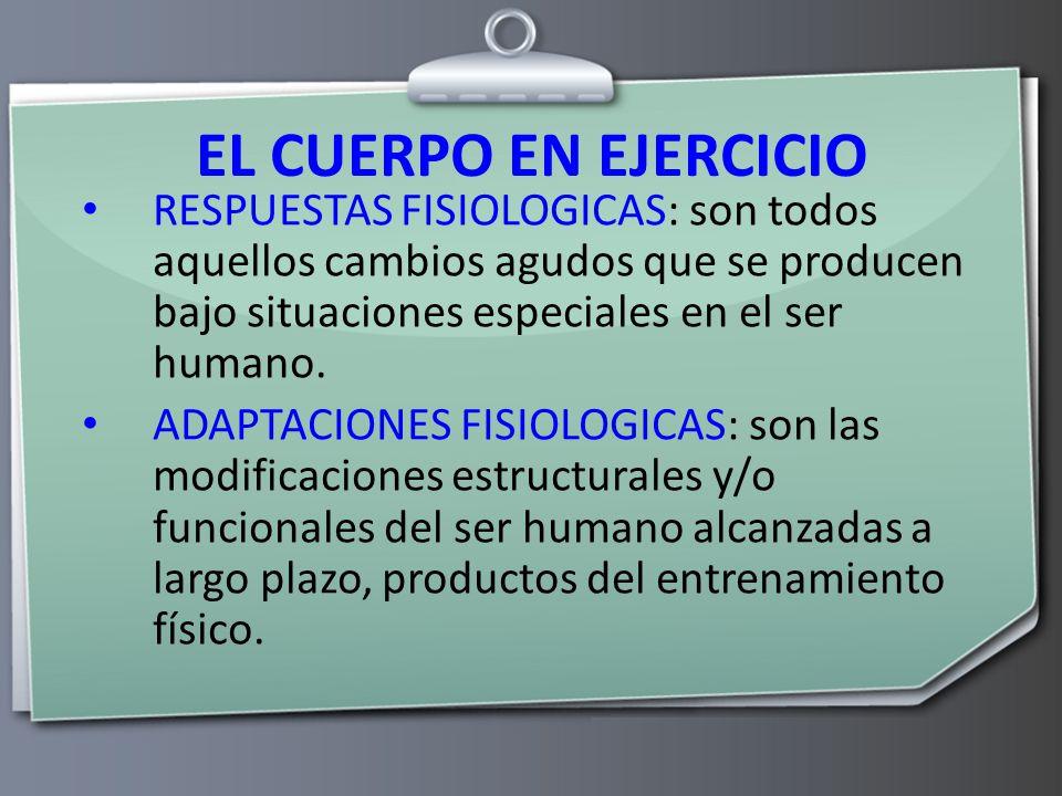 Fisiología del Ejercicio - ppt video online descargar