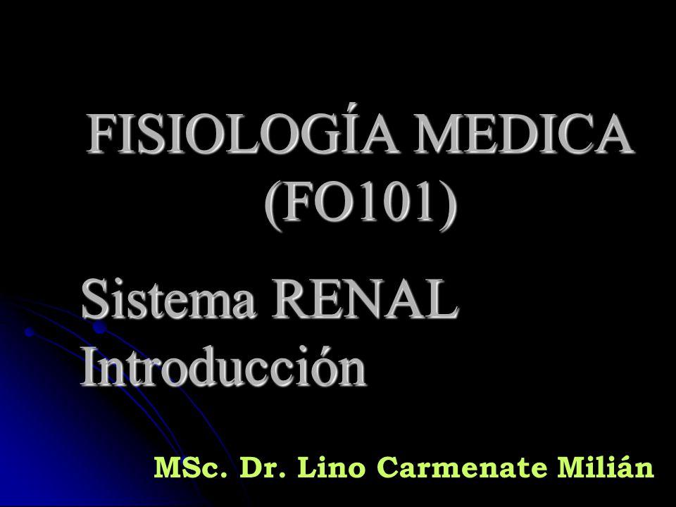 FISIOLOGÍA MEDICA (FO101) Sistema RENAL Introducción - ppt descargar
