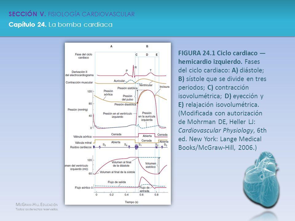 Bonito Capítulo 24 Anatomía Y Fisiología Embellecimiento - Imágenes ...