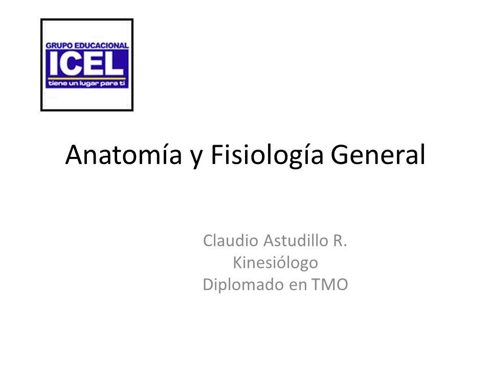 Anatomía y Fisiología General - ppt descargar