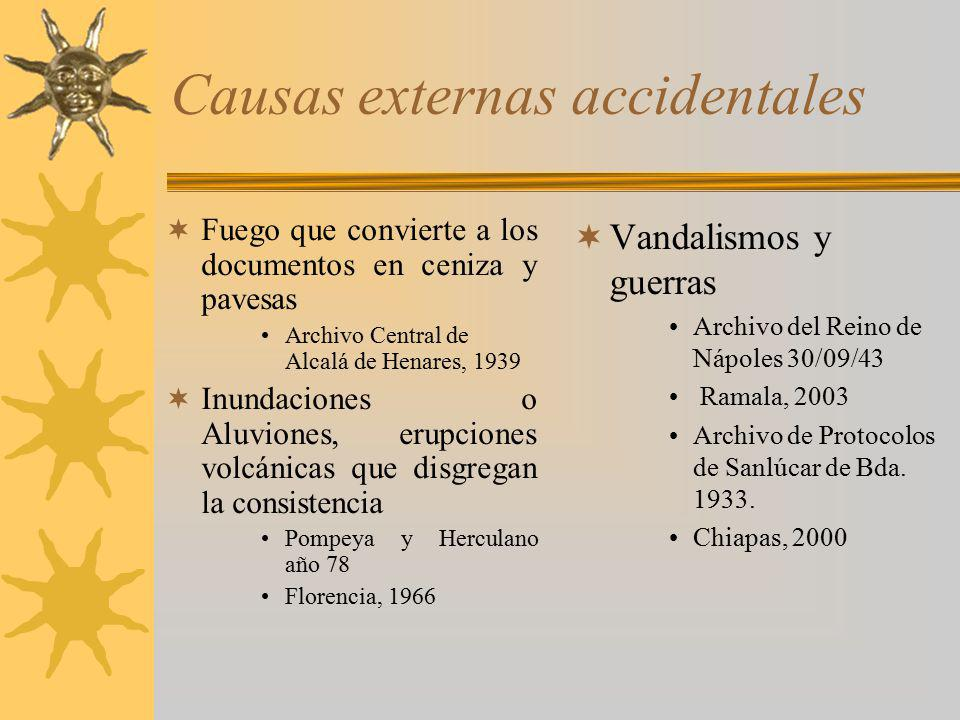 Causas externas accidentales