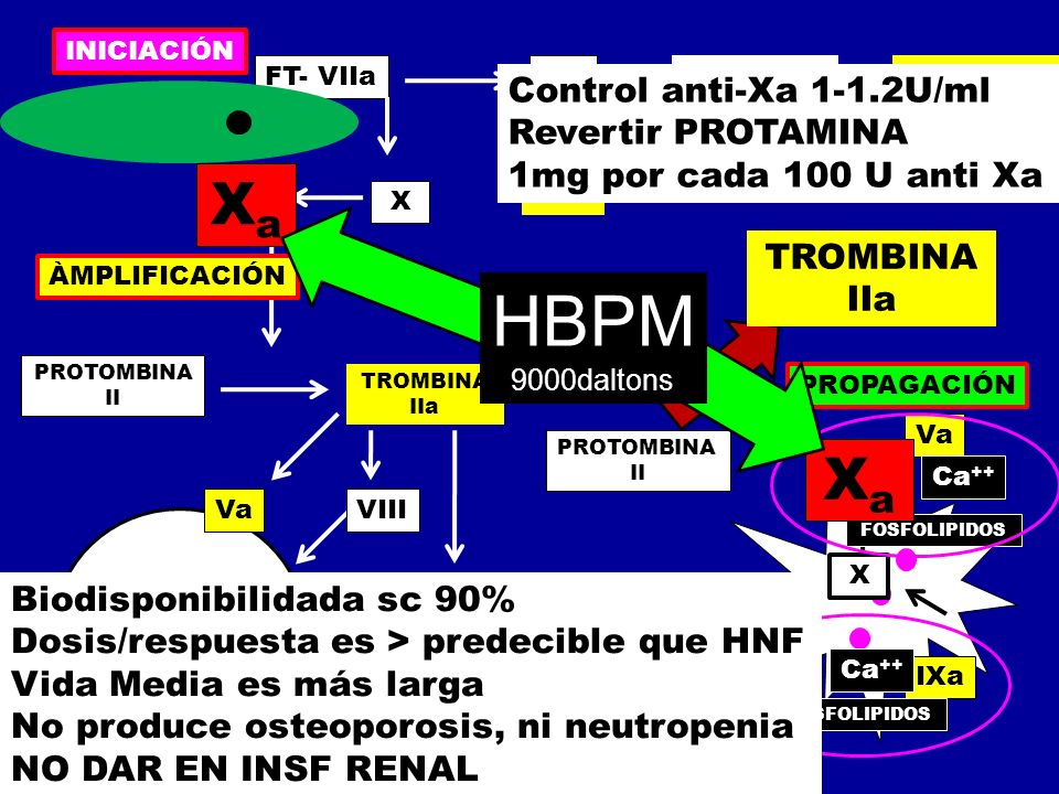 HBPM Xa Xa Control anti-Xa 1-1.2U/ml Revertir PROTAMINA