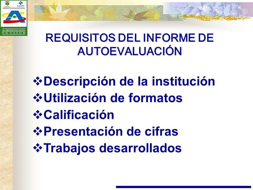 REQUISITOS DEL INFORME DE AUTOEVALUACIÓN