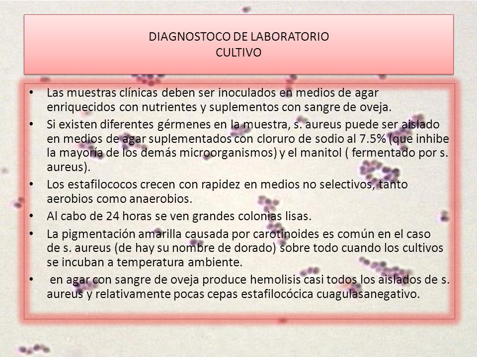 DIAGNOSTOCO DE LABORATORIO CULTIVO