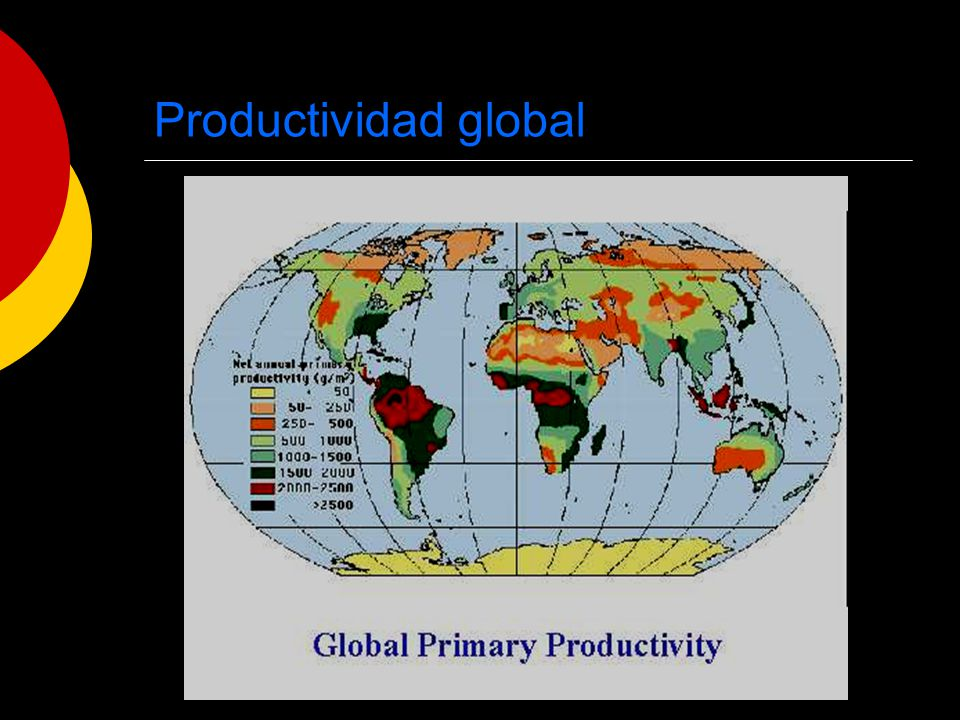 Productividad global