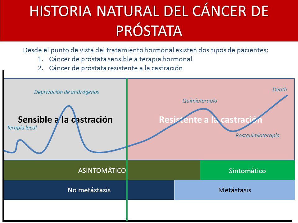 cancer de prostata historia natural)