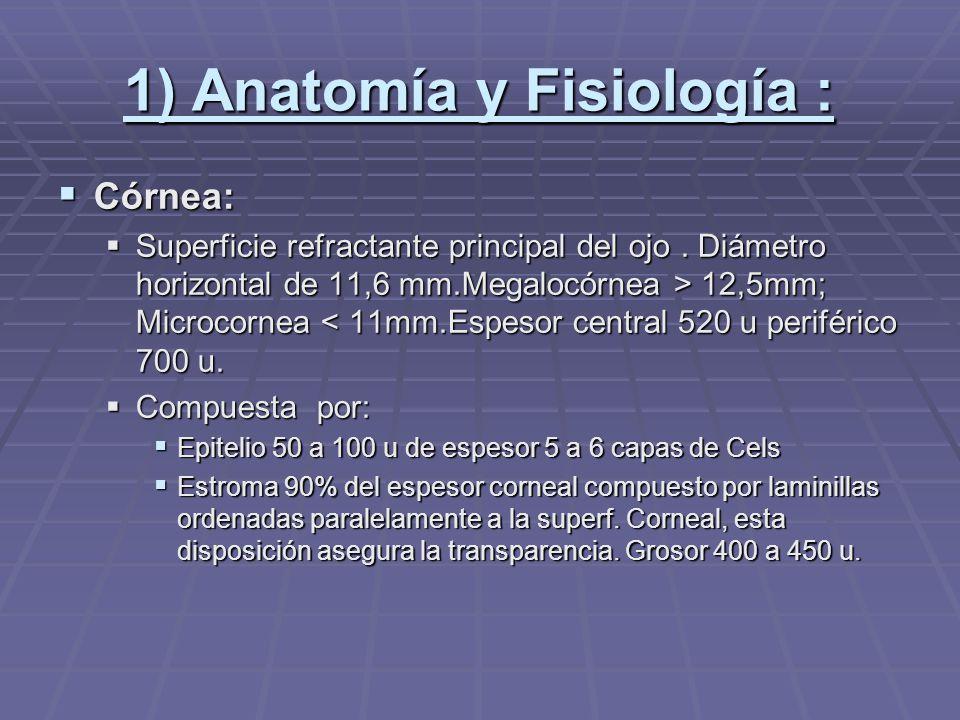 FISIOLOGÍA DEL AMBIENTE Y DEL TRABAJO - ppt descargar