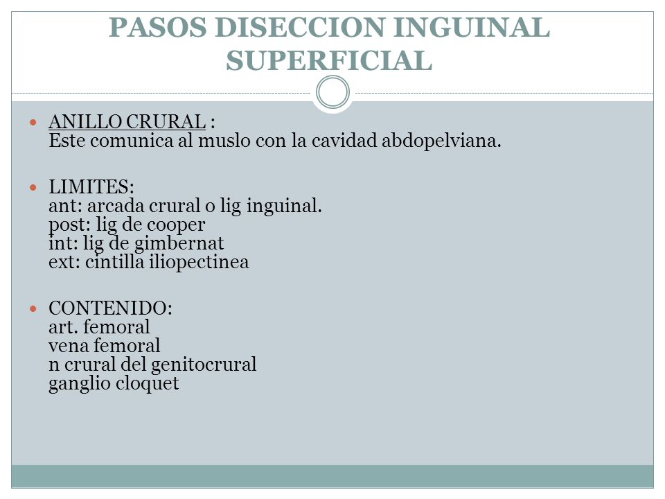 DISECCION RADICAL INGUINO-CRURAL. - ppt video online descargar
