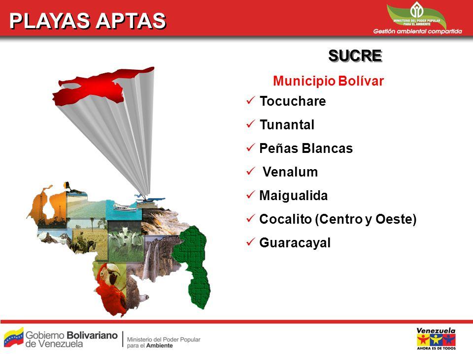 SEMANA SANTA 2008 REPORTE DE PLAYAS APTAS POR ENTIDAD