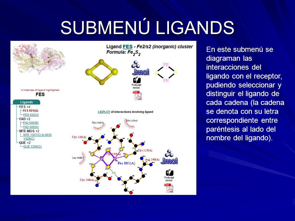 SUBMENÚ LIGANDS