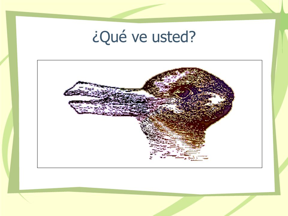¿Qué ve usted