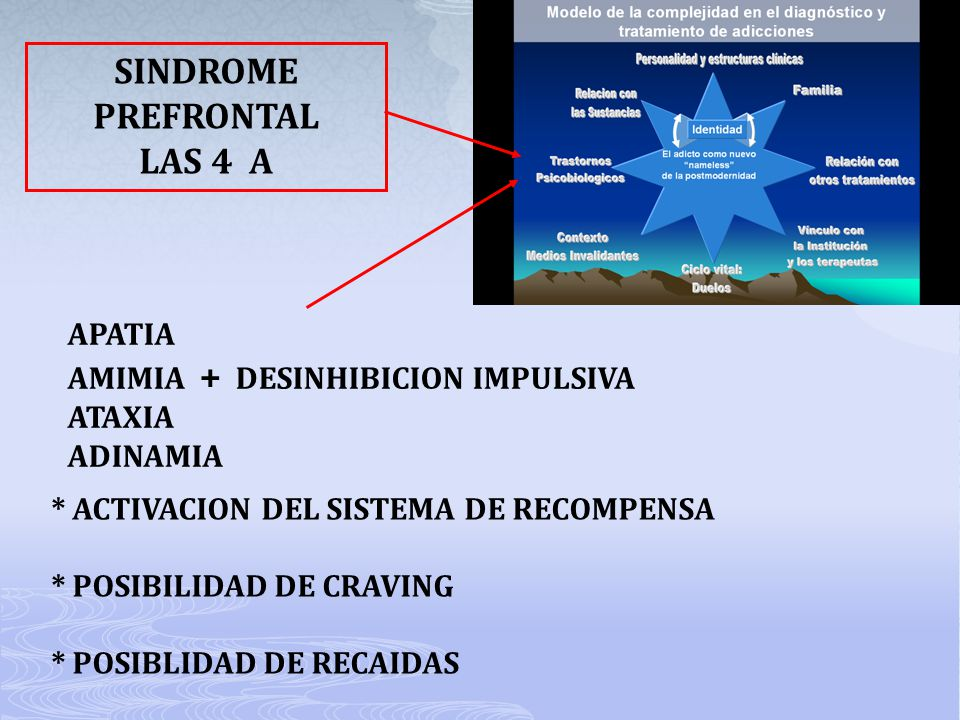 SINDROME PREFRONTAL LAS 4 A