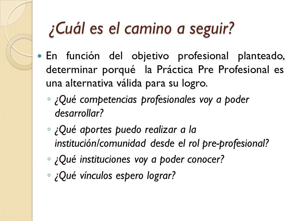 Programa De Practicas Pre Profesionales Ppt Video Online Descargar