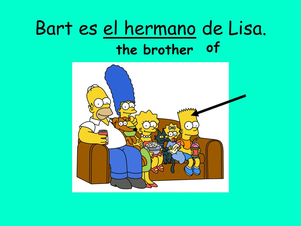 Bart es el hermano de Lisa.