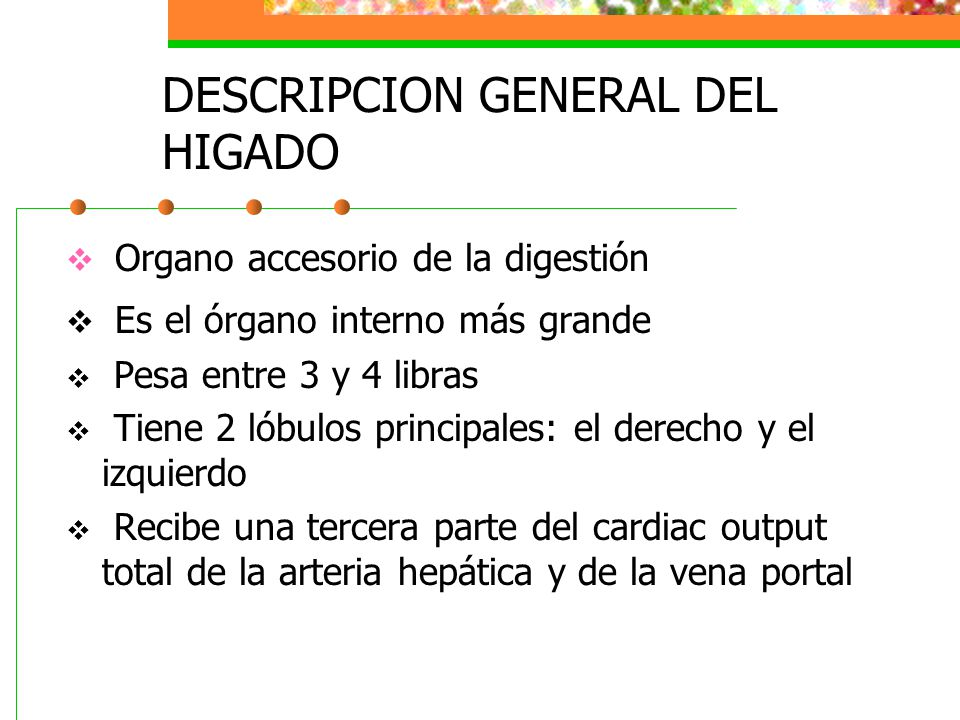 DESCRIPCION GENERAL DEL HIGADO
