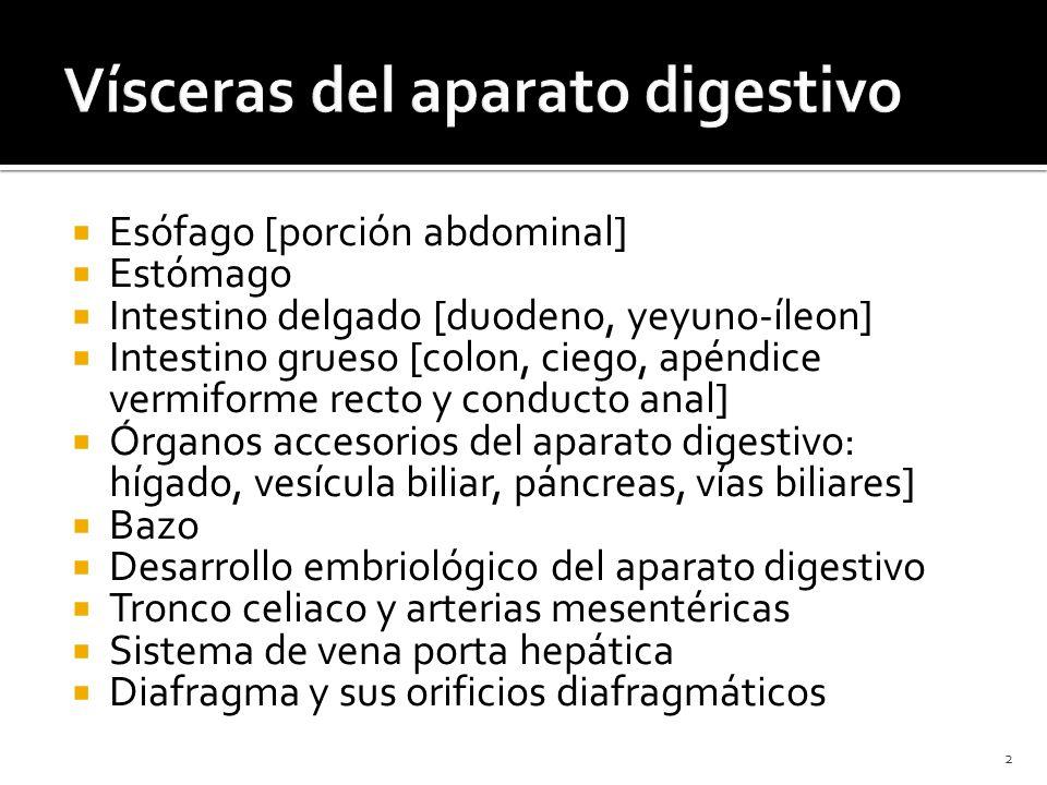 Vísceras del aparato digestivo - ppt descargar