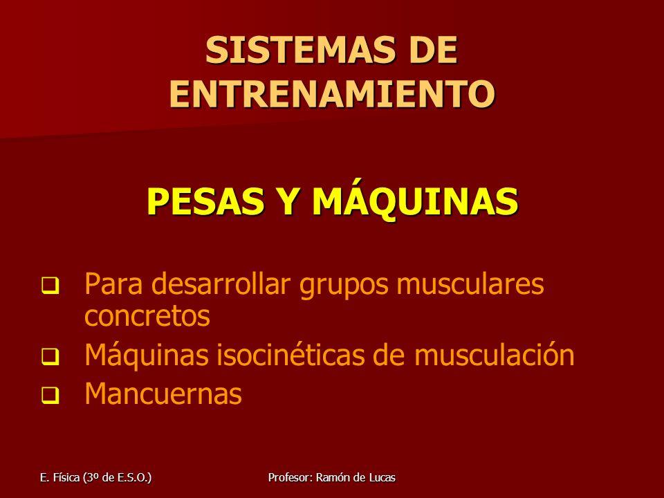 Entrenar Todos Los Grupos Musculares | BLSE