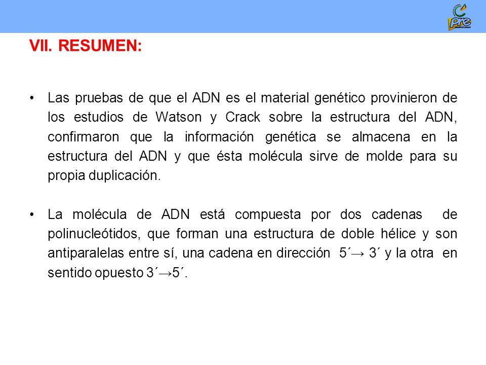 Bases Quimicas De La Herencia Ciclo Y Division Celular Ppt