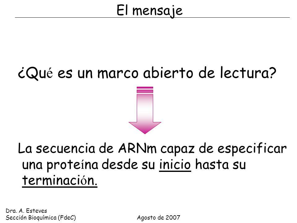 Perfecto Marcos Abiertos Embellecimiento - Ideas Personalizadas de ...