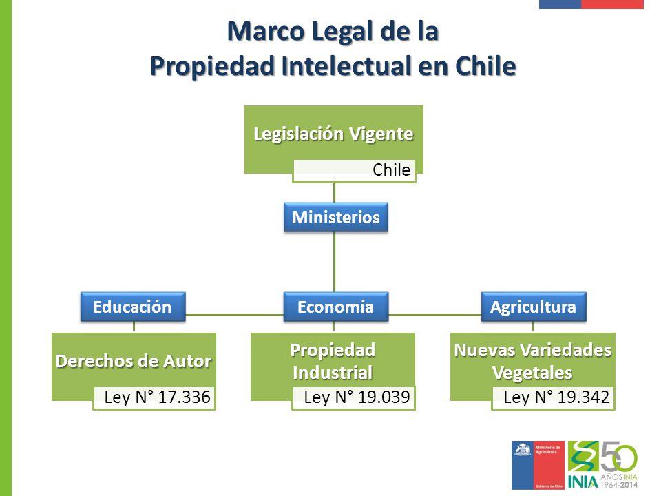 Marco Legal Propiedad Intelectual en Chile Carlos Fernández B. Ph. D ...