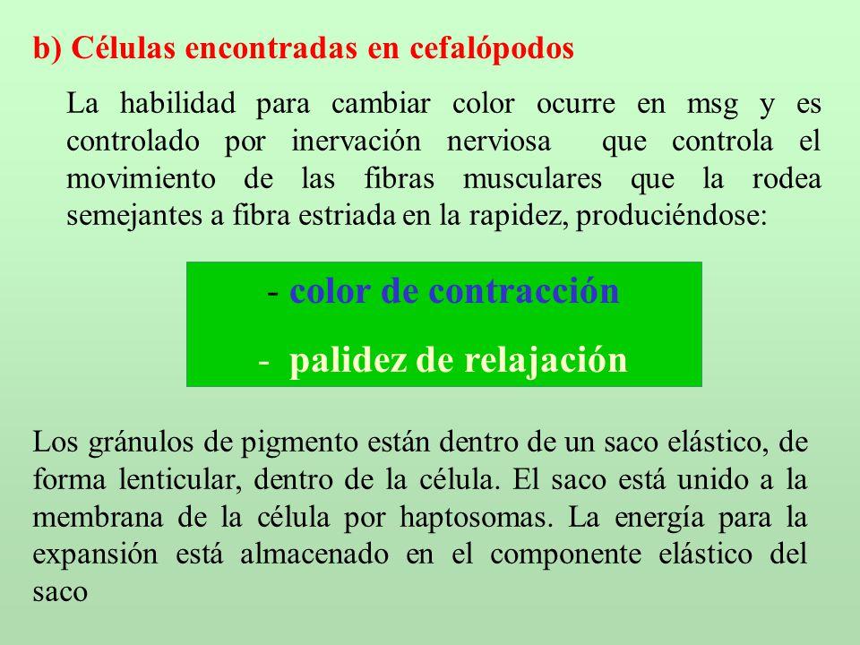 Universidad Nacional del Santa - ppt descargar