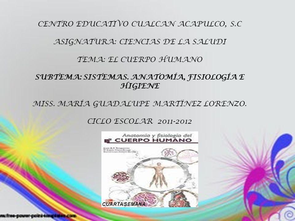 Perfecto ámbito De La Anatomía Y Fisiología Motivo - Imágenes de ...