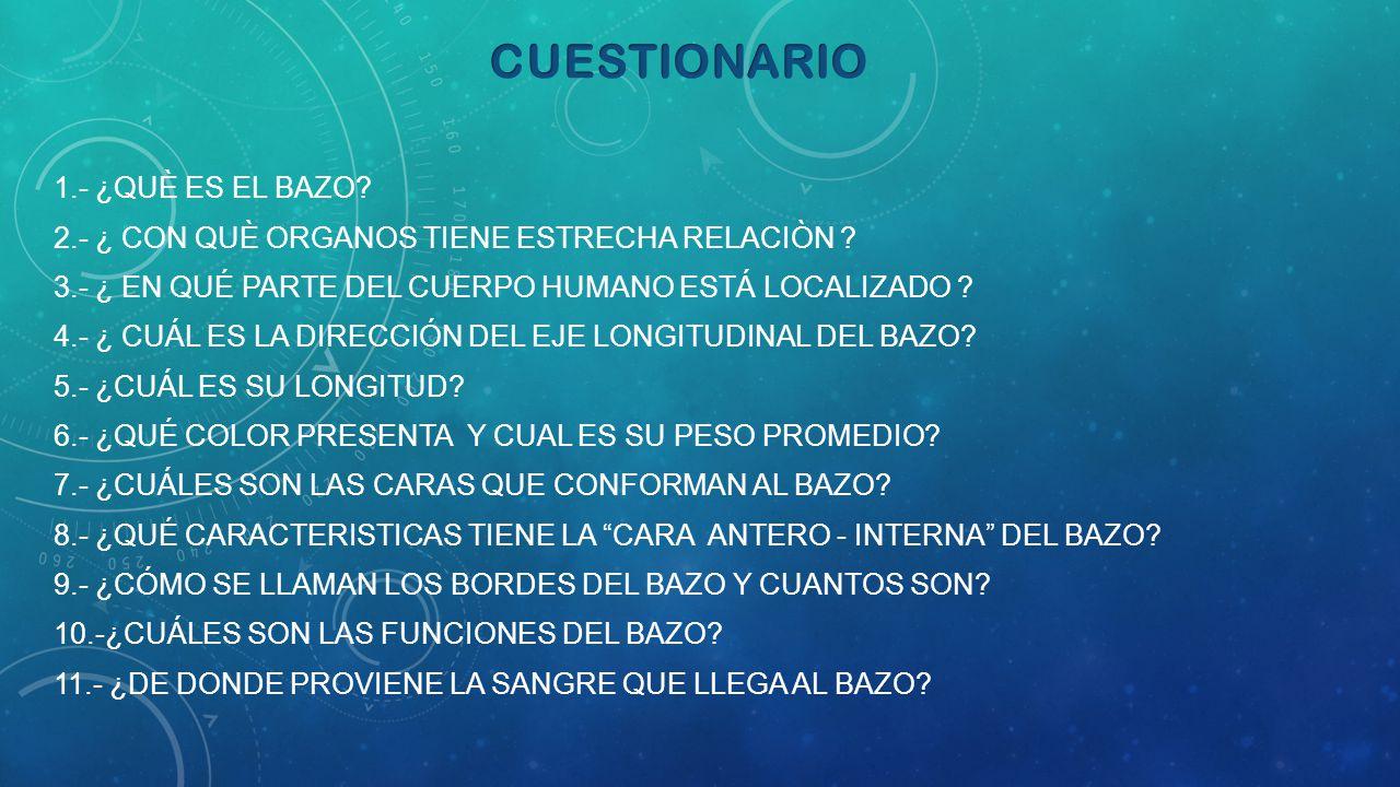 CUESTIONARIO 1.- ¿QUÈ ES EL BAZO? - ppt descargar