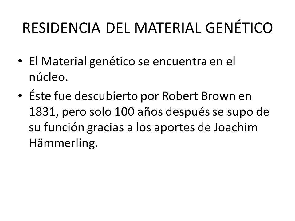 Material Genético Y Reproducción Celular Ppt Video Online