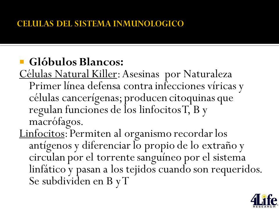 SISTEMA INMUNOLOGICO Y FACTORES DE TRANSFERENCIA - ppt descargar