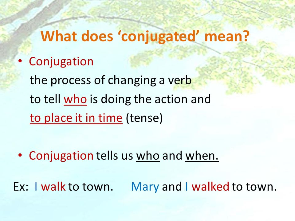 What does 'conjugated' mean
