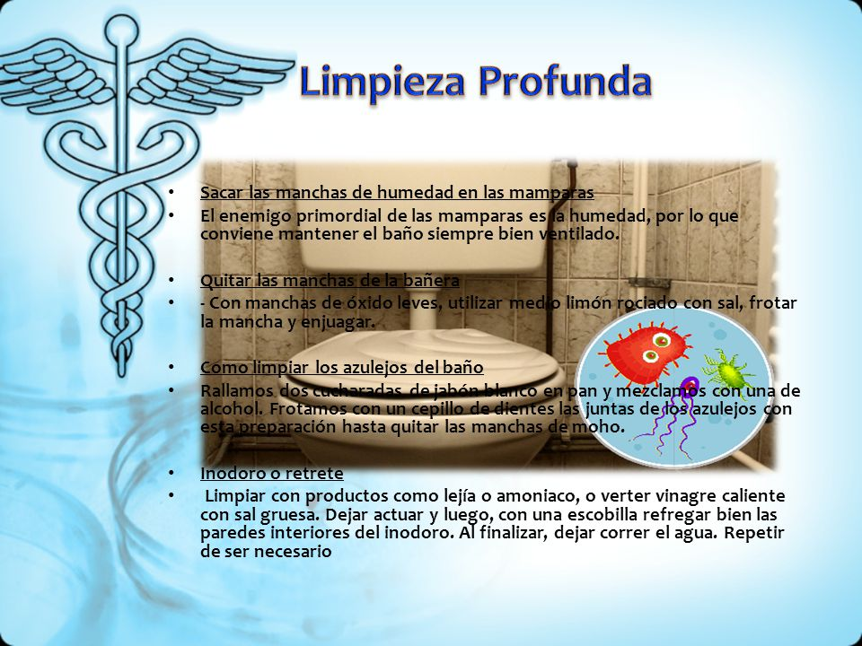 Higiene en el cuidado intimo de la mujer ppt descargar - Quitar manchas de moho en paredes sin lejia ...